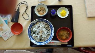 和歌山のしらす丼 | Webikeツーリング