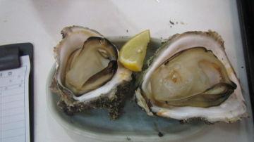 岩牡蠣 今が旬 | Webikeツーリング