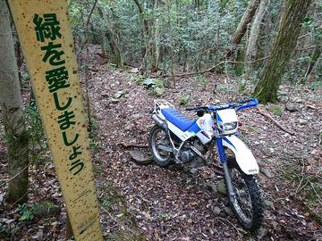 225W:安芸津三津林道群(東広島市) | Webikeツーリング