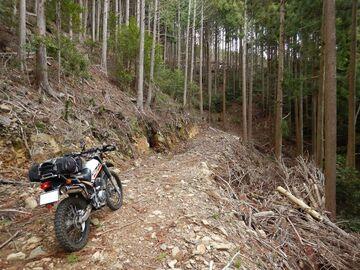 ブログ更新~オートバイの旅~justa2ofus-kzblues.com  「予定を変更し、三河林道散策。2021.4.3(土) その1」   Webikeツーリング