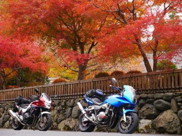 ウェビ友さんと紅葉ツーリングで高野山へ♪ | Webikeツーリング