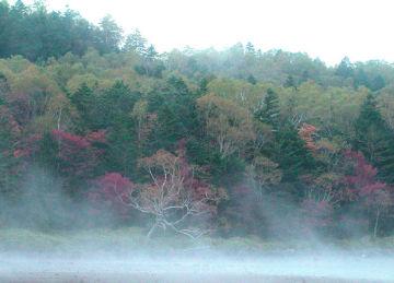 秋の雨池 | Webikeツーリング