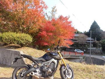 大分県国東半島 両子寺へ | Webikeツーリング