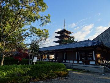 奈良と、紀伊半島を熊野市から時計回り | Webikeツーリング