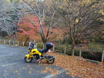 大阪府道6号線で亀岡に行き、国423号線で帰ります。 | Webikeツーリング