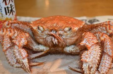 釧路の蟹 | Webikeツーリング
