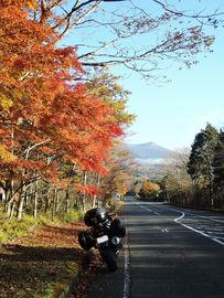 2日連チャンの朝駆け~紅葉狩りツー | Webikeツーリング