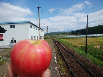親子鷹de○○長野の秘密リンゴを買出し...*v(-_^) | Webikeツーリング
