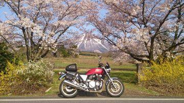 大山と桜とCB | Webikeツーリング