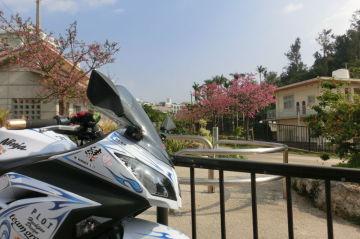 桜を見に行きました | Webikeツーリング