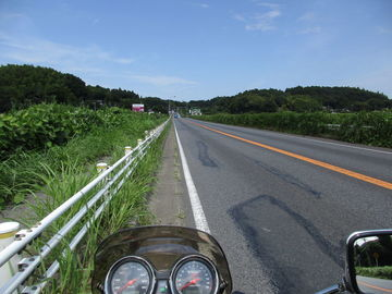 北総 向日葵ツーリング/印旛から成田へ | Webikeツーリング