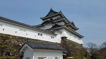 淡嶋神社~和歌山城~紀三井寺~猫駅長 | Webikeツーリング