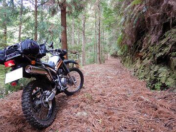ブログ更新~オートバイの旅~justa2ofus-kzblues.com  「予定を変更し、三河林道散策。2021.4.3(土) その2」   Webikeツーリング