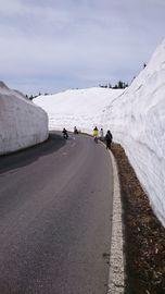 ゴールデンウイーク渋峠 雪の回廊 | Webikeツーリング