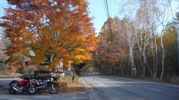 毎年恒例の志賀高原 | Webikeツーリング
