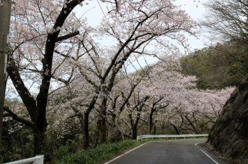島根半島エメラルドロード Vol.6 | Webikeツーリング