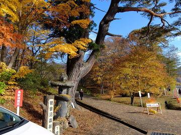 流石の観音沼森林公園 (後編) | Webikeツーリング