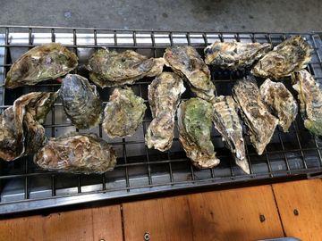 牡蠣ツー準備(1週間前のお知らせ) | Webikeツーリング