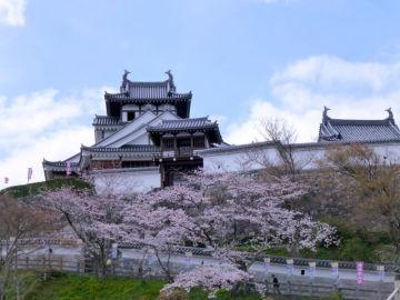 お城と桜っていいよね♪ | Webikeツーリング