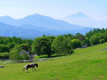 梅雨入り前に「八ヶ岳」までトコトコ♪ | Webikeツーリング