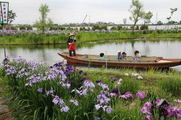 初夏の房州水郷へ/温泉&あやめ娘 | Webikeツーリング