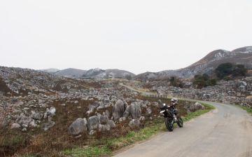 築城基地に行くついでに桜の開花状況と平尾台 | Webikeツーリング