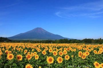 <告知>10月17~19日 富士山ツー!  | Webikeツーリング