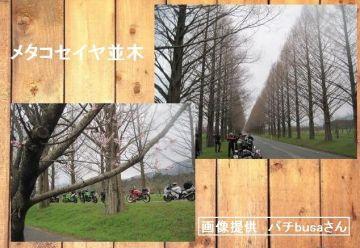 V爺さんと念願の初対面をし2日間三重県を、最終日は琵琶湖周辺ロンツー敢行〔計画〕 | Webikeツーリング