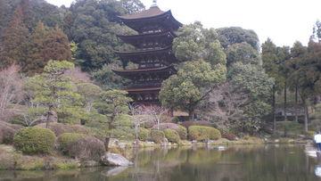 山口市 瑠璃光寺へ行ってきました! | Webikeツーリング