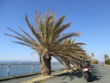 浜名湖めぐり&遠州灘大砂丘へ/遠州灘ツーリング3 | Webikeツーリング