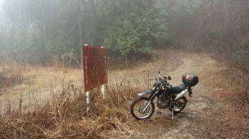 濃霧の林道はヘタレの心を挫いた   Webikeツーリング
