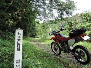 池原小谷林道と黒河林道 | Webikeツーリング