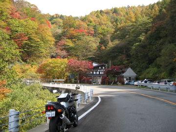 秋色の霧降高原と日塩もみじラインへひとっ走り | Webikeツーリング