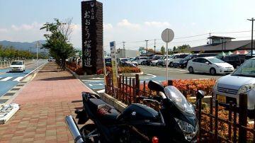 道の駅 おおとう桜街道 | Webikeツーリング