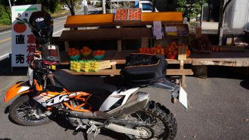 ツーリングシーズンは柿の季節 | Webikeツーリング