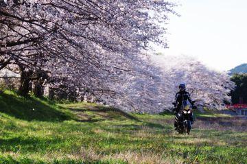 新しい相棒とスタートの春 | Webikeツーリング