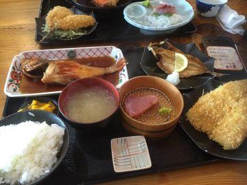 真鶴で魚~伝説の椿ライン~大観山 | Webikeツーリング