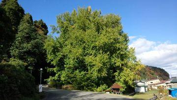 青森県 西海岸一周 紅葉の旅 | Webikeツーリング