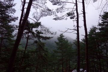 一泊二日のビーナスライン&キャンプツーリング(2日目) | Webikeツーリング
