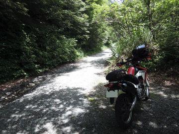 またまたマキノ黒河林道ラーツー | Webikeツーリング