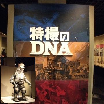 趣味のDNA | Webikeツーリング