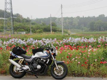 バイクびゅう/ロマンの村から美人の町へ<最終回> | Webikeツーリング