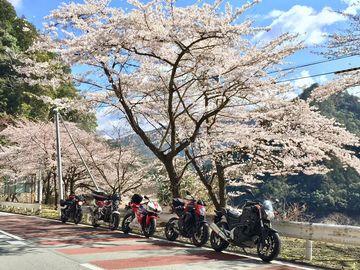 2019/3/31 熊野・尾鷲・紀伊長島 | Webikeツーリング
