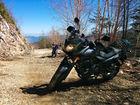 Rider_Alpacaさん